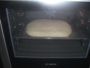 brood 14