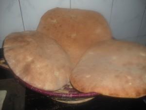 brood 18
