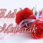 Ied Mobarak Saeed