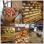 Boter Kaas en Eieren