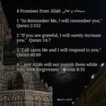 Promises From God/Allah!